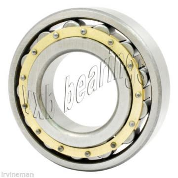 N309M Cylindrical Roller Bearing 45x100x25 Cylindrical Bearings 17520